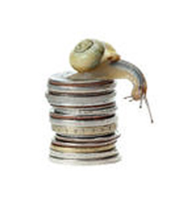 Snail on coins