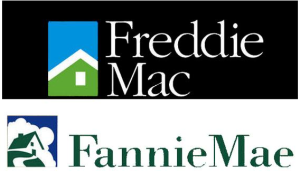 Fannie and Freddy Loans